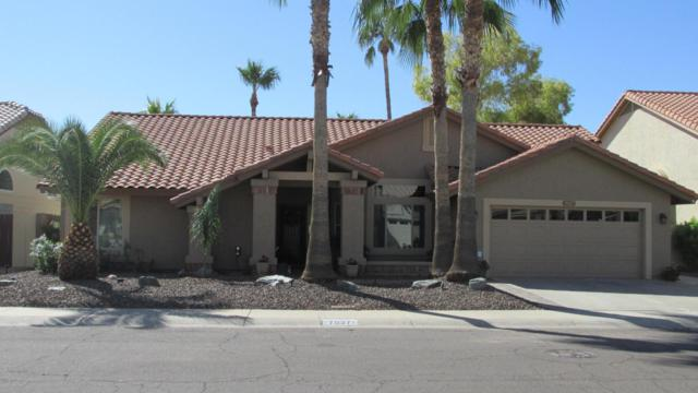 7027 W Sack Drive, Glendale, AZ 85308 (MLS #5672613) :: Essential Properties, Inc.