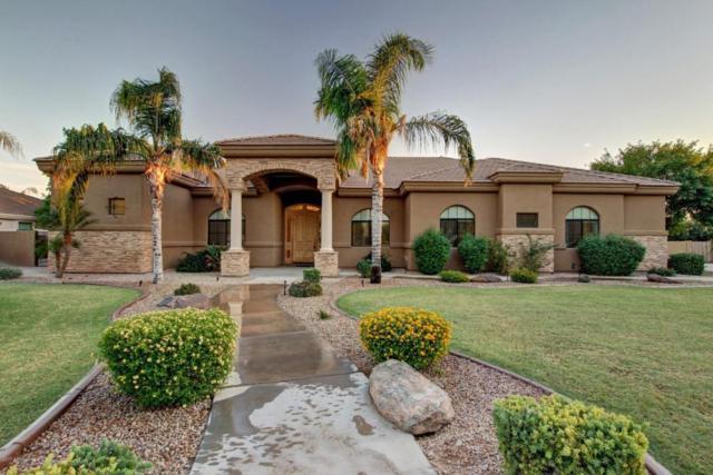 19835 E Silver Creek Lane, Queen Creek, AZ 85142 (MLS #5672745) :: Revelation Real Estate