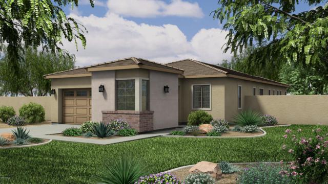 12036 W Peak View Road, Peoria, AZ 85383 (MLS #5672884) :: Kortright Group - West USA Realty