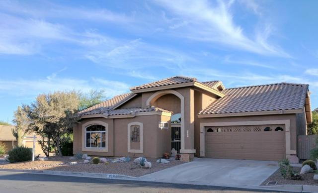 8295 E Sweet Acacia Drive, Gold Canyon, AZ 85118 (MLS #5672947) :: The Bill and Cindy Flowers Team