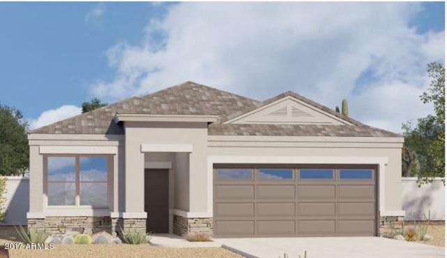 42001 W Lunar Street, Maricopa, AZ 85138 (MLS #5673320) :: Yost Realty Group at RE/MAX Casa Grande