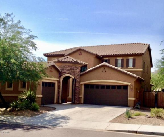 8455 W Desert Elm Lane, Peoria, AZ 85383 (MLS #5673348) :: The Laughton Team