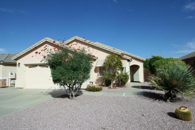 10390 W Yukon Drive, Peoria, AZ 85382 (MLS #5673387) :: Desert Home Premier