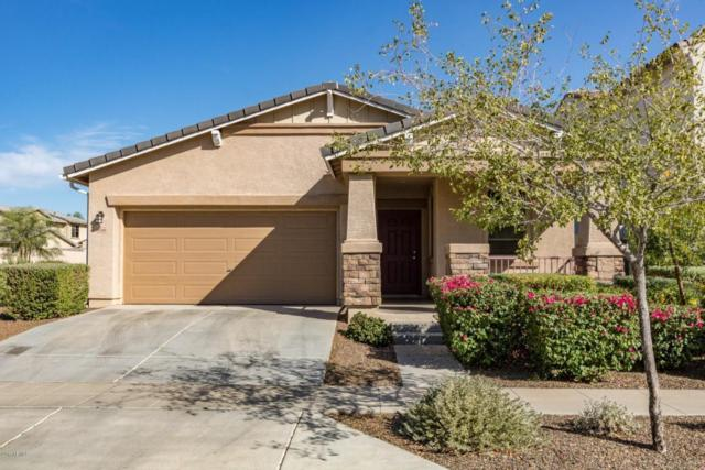 14760 W Surrey Drive, Surprise, AZ 85379 (MLS #5673552) :: Rodney Barnes Real Estate
