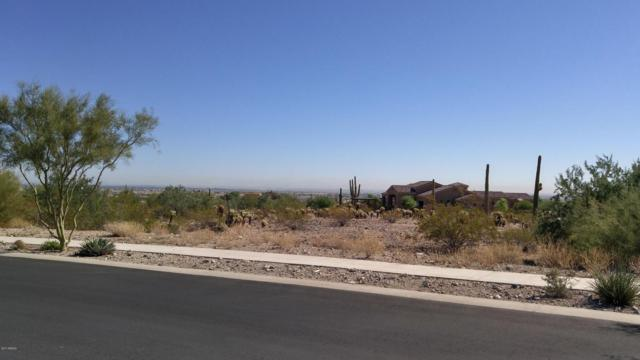 4555 N Middleton Place, Buckeye, AZ 85396 (MLS #5673614) :: Essential Properties, Inc.