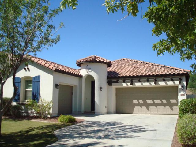 20776 W Hamilton Street, Buckeye, AZ 85396 (MLS #5673650) :: Essential Properties, Inc.