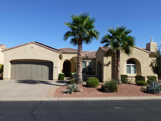 22413 N Galicia Drive, Sun City West, AZ 85375 (MLS #5673673) :: Desert Home Premier
