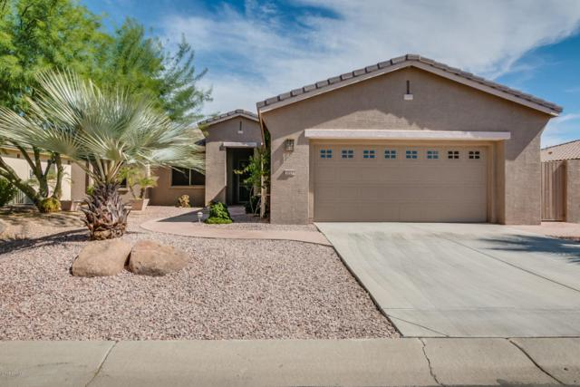 3711 N 161ST Avenue, Goodyear, AZ 85395 (MLS #5673728) :: Kortright Group - West USA Realty