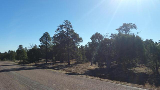 3462 Bobsled Circle, Heber, AZ 85928 (MLS #5673806) :: Brett Tanner Home Selling Team