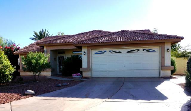11043 W Yukon Drive, Sun City, AZ 85373 (MLS #5673811) :: Desert Home Premier