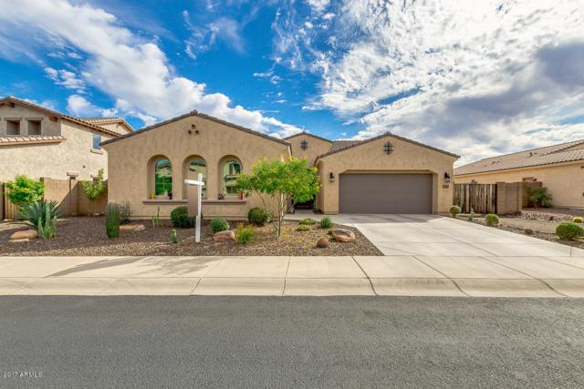 13377 W Jesse Red Drive, Peoria, AZ 85383 (MLS #5673904) :: Rodney Barnes Real Estate