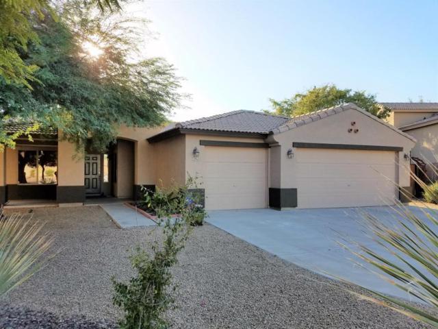 2096 S 159TH Avenue, Goodyear, AZ 85338 (MLS #5674098) :: Desert Home Premier