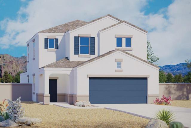 41435 W Novak Lane, Maricopa, AZ 85138 (MLS #5674177) :: Occasio Realty