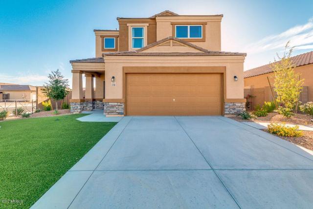 41445 W Novak Lane, Maricopa, AZ 85138 (MLS #5674180) :: Occasio Realty