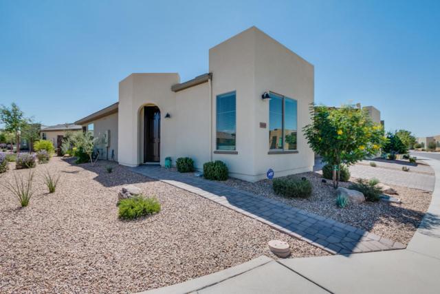 36169 N Desert Tea Drive, San Tan Valley, AZ 85140 (MLS #5674402) :: Yost Realty Group at RE/MAX Casa Grande