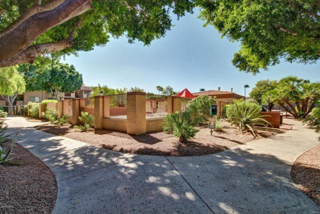 3031 N Civic Center Plaza #241, Scottsdale, AZ 85251 (MLS #5674411) :: 10X Homes
