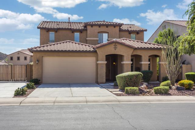 29660 N 69TH Lane, Peoria, AZ 85383 (MLS #5674480) :: The Laughton Team