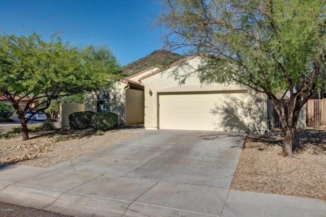 25506 N 54TH Lane, Phoenix, AZ 85083 (MLS #5674520) :: The Laughton Team