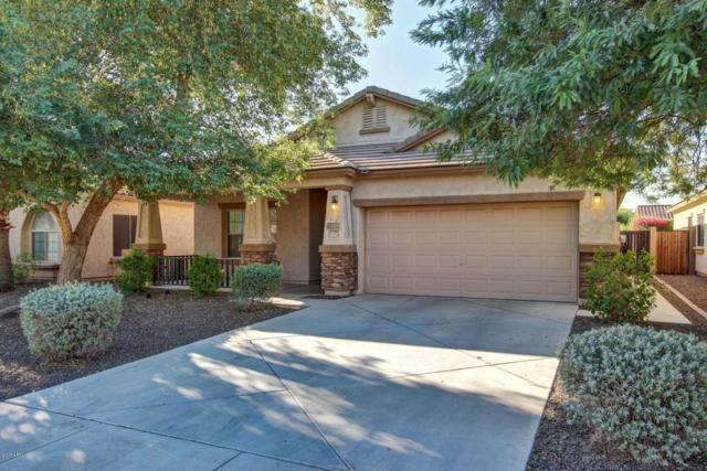 5305 W Saddlehorn Road, Phoenix, AZ 85083 (MLS #5674526) :: The Laughton Team