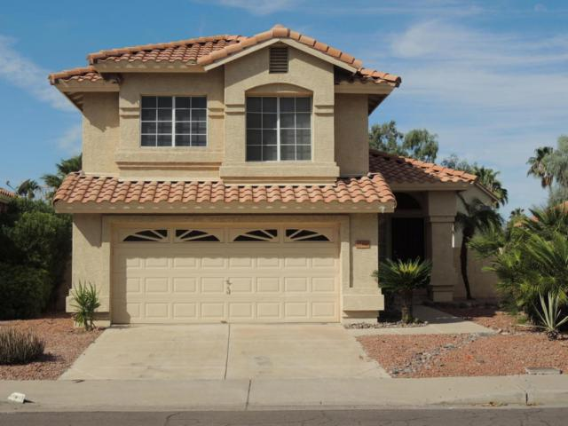 19416 N 78TH Avenue, Glendale, AZ 85308 (MLS #5674543) :: The Laughton Team