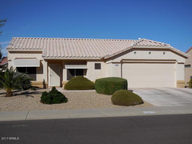 14218 W Territorial Lane, Sun City West, AZ 85375 (MLS #5674559) :: Desert Home Premier