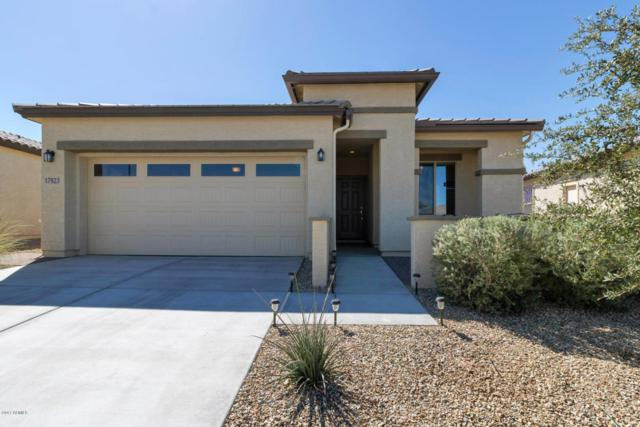 17923 W Silver Fox Way, Goodyear, AZ 85338 (MLS #5674578) :: Rodney Barnes Real Estate