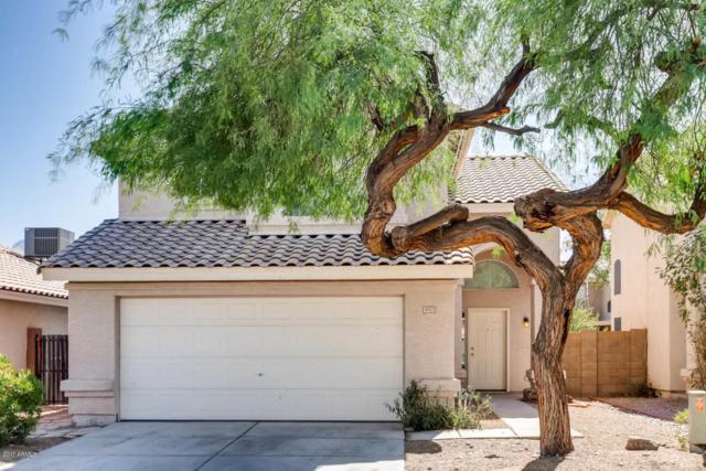 4923 W Wikieup Lane, Glendale, AZ 85308 (MLS #5674654) :: Desert Home Premier
