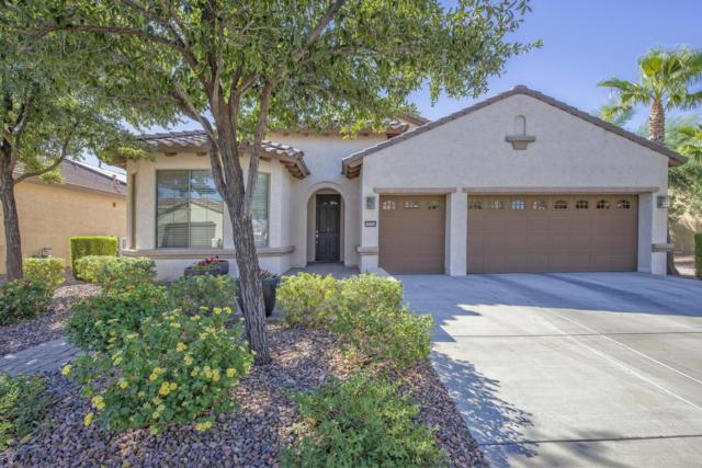 16343 W Virginia Avenue, Goodyear, AZ 85395 (MLS #5674707) :: Kortright Group - West USA Realty
