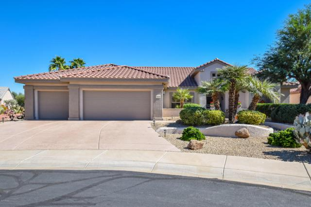 19723 N Orangetree Court, Surprise, AZ 85374 (MLS #5674771) :: Desert Home Premier