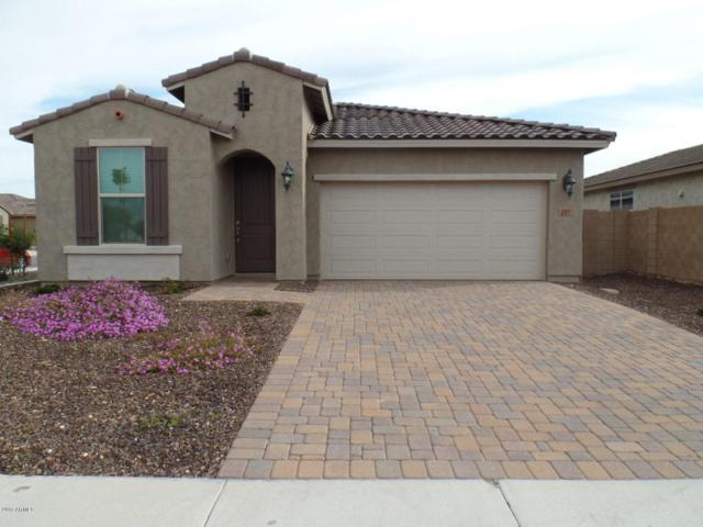 297 N Jesse Street, Chandler, AZ 85225 (MLS #5674837) :: 10X Homes