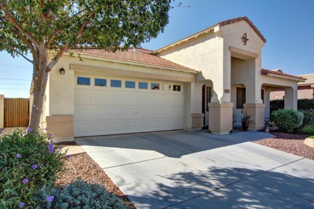 17675 W Charter Oak Road, Surprise, AZ 85388 (MLS #5674875) :: Desert Home Premier