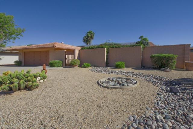 12718 W Paintbrush Drive, Sun City West, AZ 85375 (MLS #5674888) :: Desert Home Premier