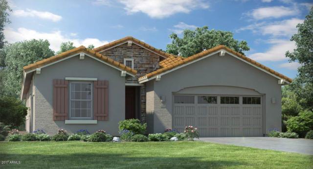 4048 E Hoot Owl Trail, Cave Creek, AZ 85331 (MLS #5674931) :: 10X Homes