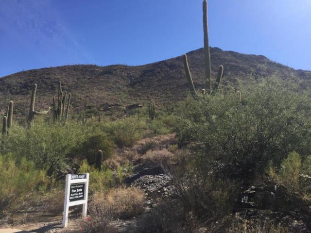 36533 N Sunset Trail, Cave Creek, AZ 85331 (MLS #5674979) :: 10X Homes