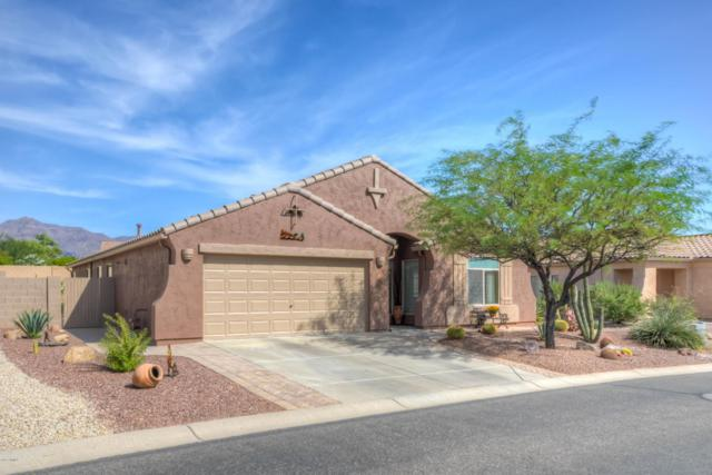 10512 E Tortilla Creek Court, Gold Canyon, AZ 85118 (MLS #5675005) :: Yost Realty Group at RE/MAX Casa Grande