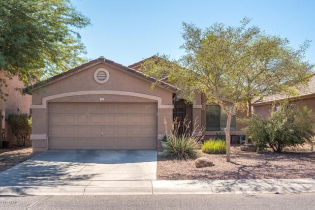 13803 W Berridge Lane, Litchfield Park, AZ 85340 (MLS #5675019) :: Group 46:10