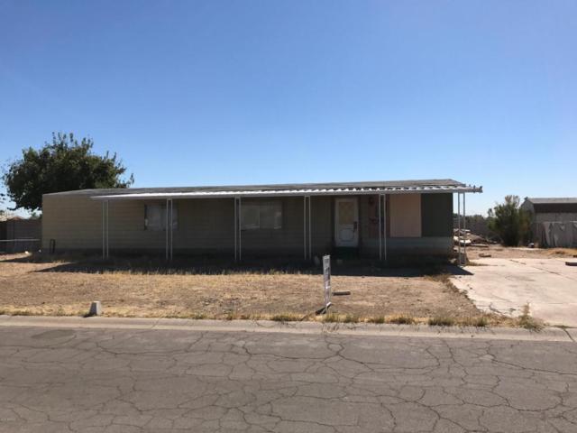 7037 W Sherri Jean Lane, Peoria, AZ 85382 (MLS #5675047) :: 10X Homes