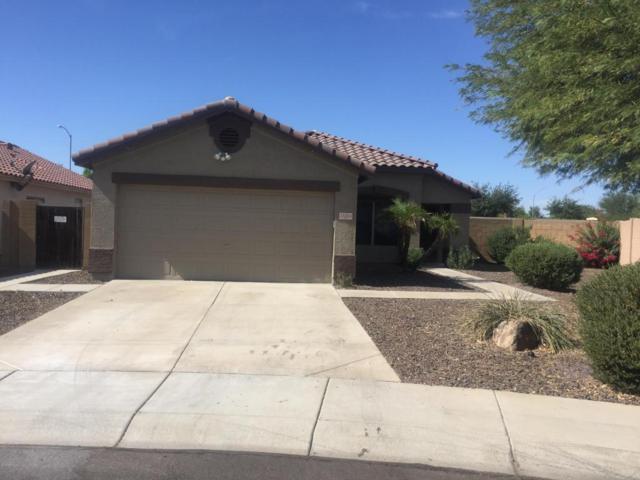 15354 N 156th Lane, Surprise, AZ 85379 (MLS #5675062) :: 10X Homes