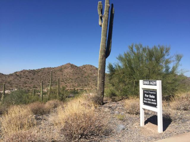 36520 N 61st Street, Cave Creek, AZ 85331 (MLS #5675065) :: 10X Homes