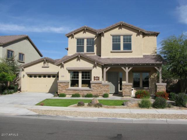 16422 W Yucatan Drive, Surprise, AZ 85388 (MLS #5675068) :: 10X Homes