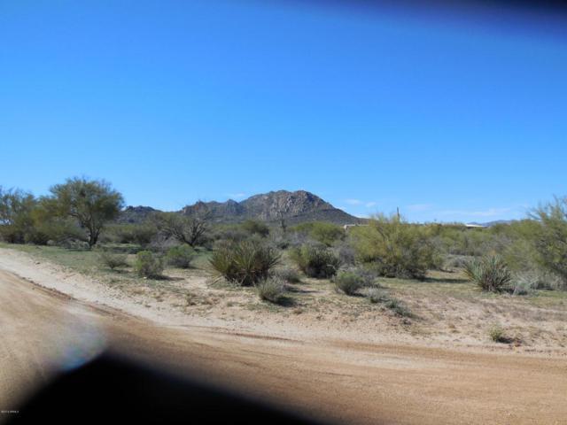136th E Lone Mountain Road, Scottsdale, AZ 85262 (MLS #5675069) :: 10X Homes