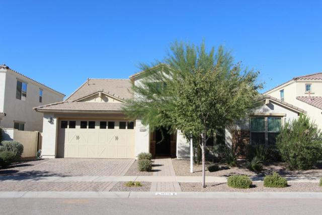 10718 E Vivid Avenue, Mesa, AZ 85212 (MLS #5675074) :: 10X Homes