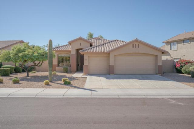 7819 E Phantom Way, Scottsdale, AZ 85255 (MLS #5675095) :: 10X Homes