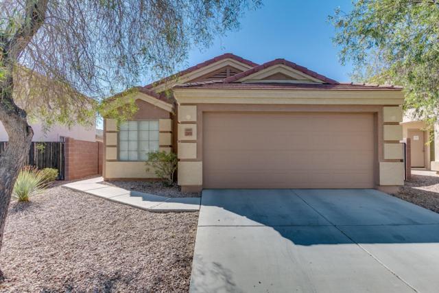 23419 W Harrison Drive, Buckeye, AZ 85326 (MLS #5675101) :: 10X Homes