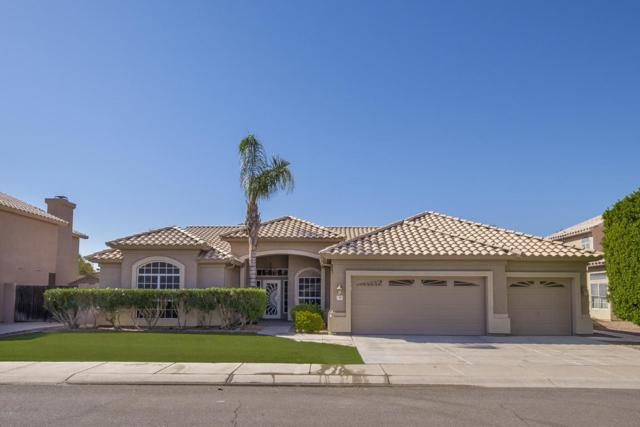 1103 E Sheffield Avenue, Chandler, AZ 85225 (MLS #5675106) :: 10X Homes