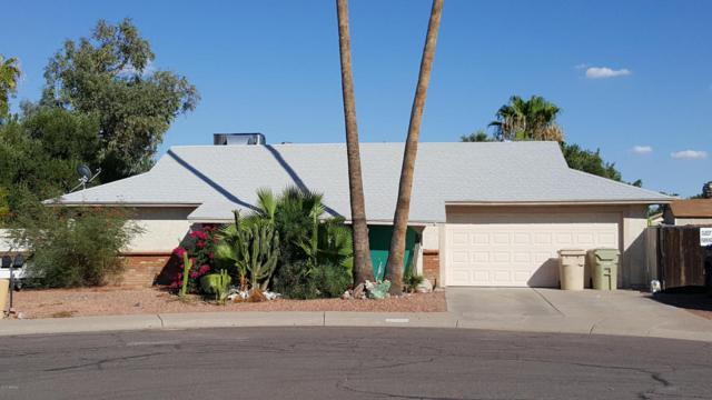 14629 N 63RD Drive, Glendale, AZ 85306 (MLS #5675109) :: 10X Homes