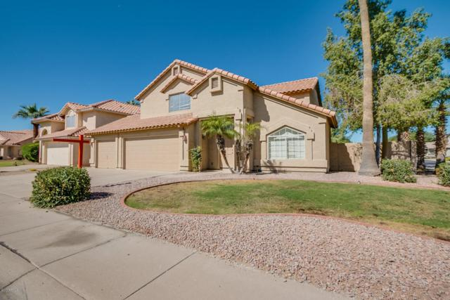 3600 S Acacia Drive, Chandler, AZ 85248 (MLS #5675119) :: 10X Homes