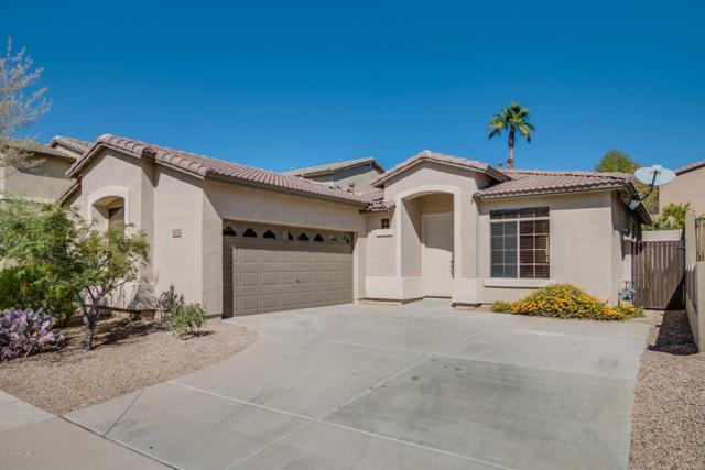 2630 W Florentine Road, Phoenix, AZ 85086 (MLS #5675127) :: 10X Homes