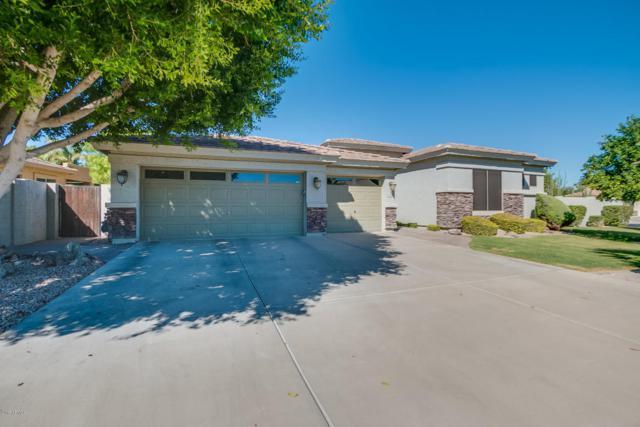 4726 E Decatur Street, Mesa, AZ 85205 (MLS #5675165) :: 10X Homes