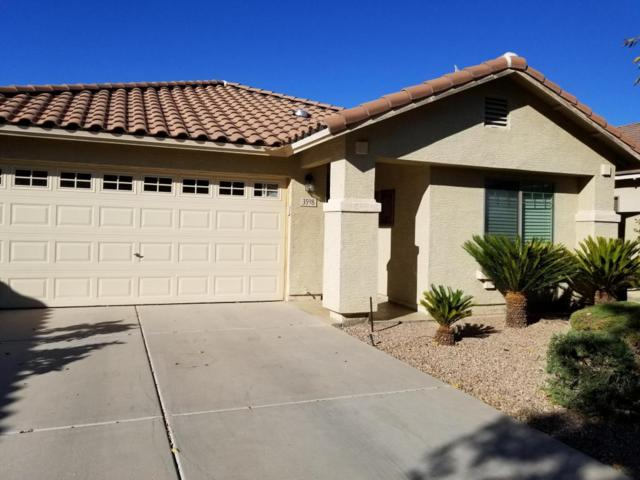 3598 E Del Rio Drive, San Tan Valley, AZ 85140 (MLS #5675187) :: The Bill and Cindy Flowers Team